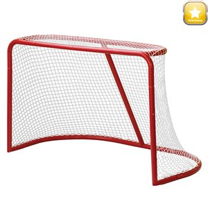 Steel hockey goal with net