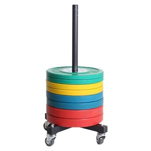 Vertical support for bumper plates