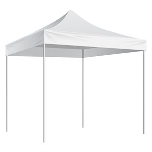 10'x10' shelter, white