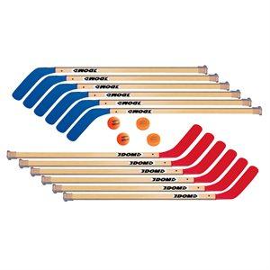 "12 hockey sticks 42"" + Balls / Pucks"