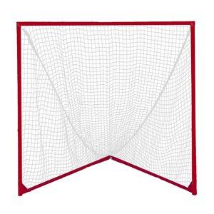 Pair of lacrosse nets
