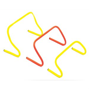 12 training hurdles