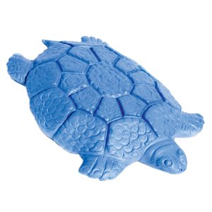 Turtle-shaped swimming board